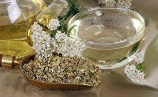 Квітучий крес салат-використання в їжу і при лікуванні захворювань