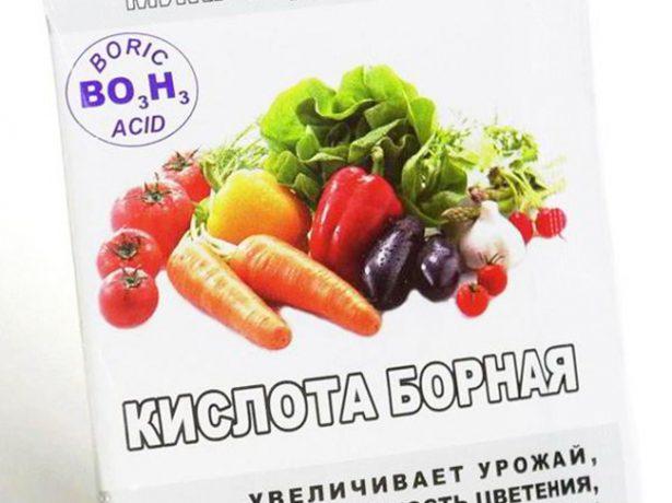 Добриво з яєчної шкаралупи: користь, приготування, застосування