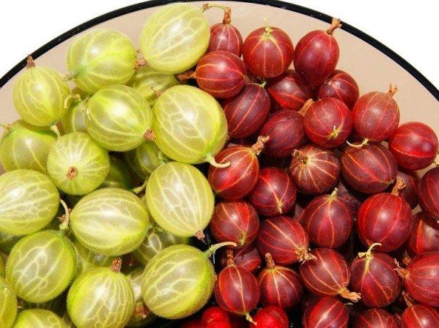 Чим корисний агрус, його склад, калорійність і способи застосування