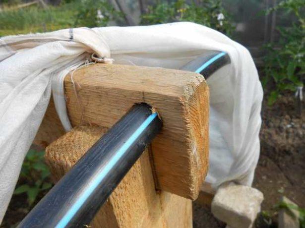 Як побудувати парник-пролісок своїми руками