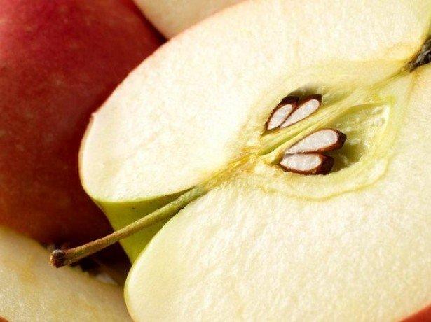 Як виростити яблуню і правильно доглядати за нею, щоб збирати хороший урожай