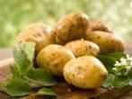 Збільшуємо врожайність картоплі за допомогою добрив