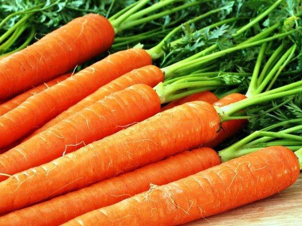 Корисна морквина або шкідлива, і в чому її цілющі властивості?