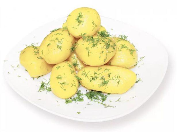 Сорт картоплі роко-незмінний фаворит овочівників