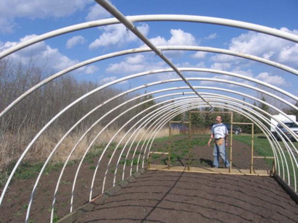 Ранній урожай без зусиль: робимо парник з поліпропіленових труб