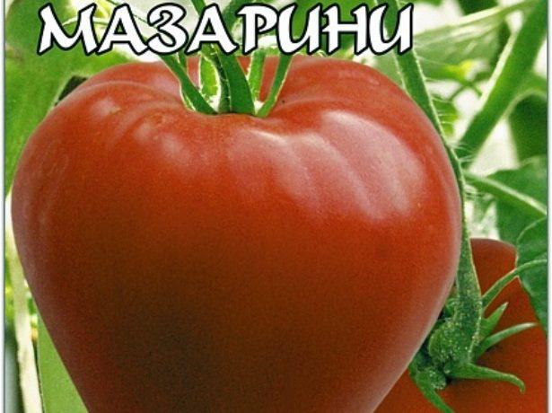 Томати мазаріні: характеристики, особливості вирощування