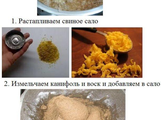 Medic Http://indasad.ru/forum/9-borba-s-boleznyami-i-vreditelyami/6409-kak-borotsya-s-belokrylkoj За 30 років зіткнулася з білокрилкою тільки в минулому році (думаю, що занесла з покупної землею «добрий помічник» – вирощувала вдома розсаду ). Завелася вона ще вдома, на перці. Т. К. Ще не знала, що це, обприскала його від попелиці. Зникнувши. Але, як тепер уже знаю, залишилися яйця, на які звичайні засоби не діють. В результаті на дачі білокрилка була скрізь: томати, огірки, кабачки, баклажани, болгарський перець (найменше), квіти, особливо майорця, лаватера, водозбір. Завдяки цьому доброму помічнику весь дачний сезон був отруєний і морально, і в повному сенсі цього слова. Поки ще можна було, обприскувала хімікатами через 4-5 днів. Намагалася знизу, під кожен лист. Все без толку. Потім вже хімію стало не можна застосовувати. Хоча пізно, але все таки згадала про тріалон (паста для прання за радянських часів) і знайшла в сараї старий. Навела на око (~3 ст. Л. На 10 л води). Обприскувати. І ось тут дійсно був результат: яка відразу прилипала до листа і дохла, інші встигали злетіти і падали. Але личинки, мабуть, все одно не гинули, та й все вже було таке розрослося, що під кожним листом не обприскати... Тепер почну труїти її, як тільки побачу хоча б одну. Думаю, може, ранньою весною обприскати і самі грядки? начитавшись порад, купила моспілан, актару. Ще радять аплауд, але його ніде немає. Ще потрібно запастися пастою (тріалон, мабуть, не випускають, є паста «південна»). Natsha Http://forum.prihoz.ru/viewtopic.php?t=3518 Я читала, що білокрилку привертає жовтий колір, і цим можна скористатися. Лист жовтого паперу намазати клейким, довго не висихає речовиною (наприклад, вазелін) і поставити близько горщиків. Листи доведеться періодично міняти. Так можна значно знизити чисельність цієї зарази. Маманя Http://dacha.wcb.ru/index.php?showtopic=10618