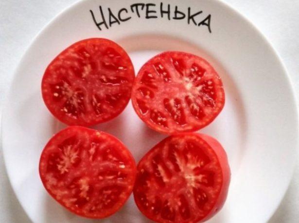 Улюблений сорт томата-настенька