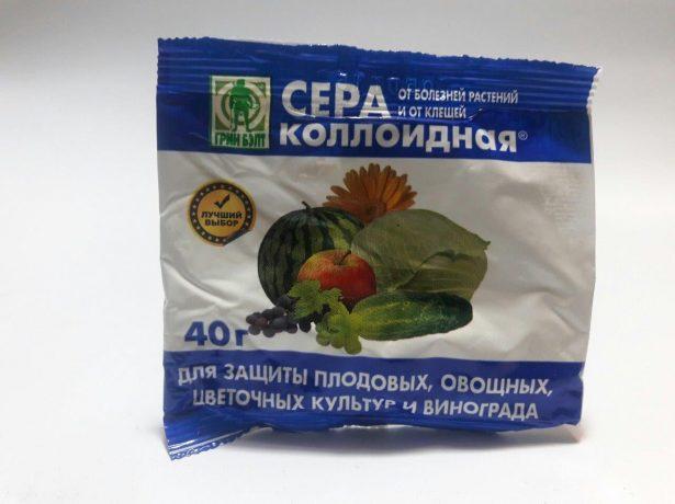 Груша велеса: невибагливий і смачний сорт для центрального регіону росії