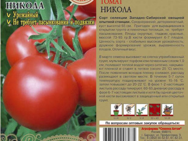 Нікола-томат з сибірським характером