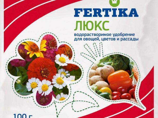 Сенсей-томат сибірської селекції з красивими і великими плодами