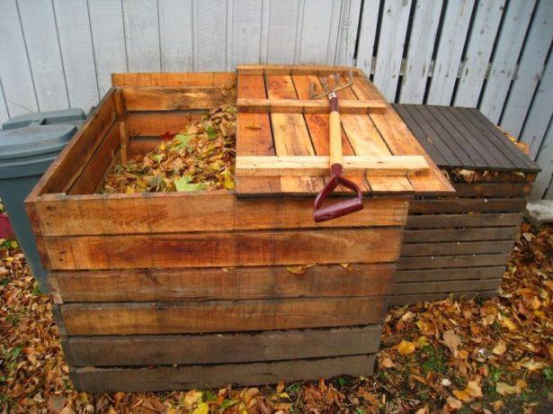 Що робити на дачі в листопаді, щоб встигнути до морозів