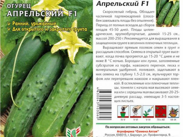 Квітневий-сорт огірків, перевірений часом