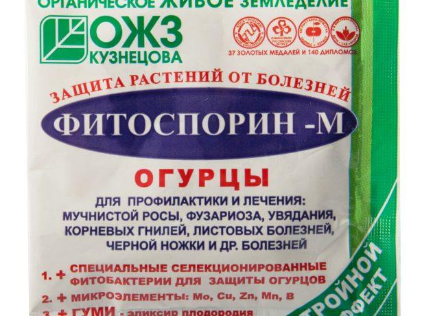 Про хвороби огірків, їх лікуванні та профілактиці