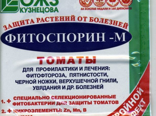 Подборка лучших сортов томатов на 2019 год