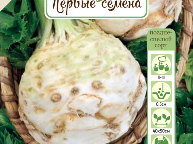 Хрусткі новинки до посівного сезону 2019-сорти огірків, включені в держреєстр в минулому році