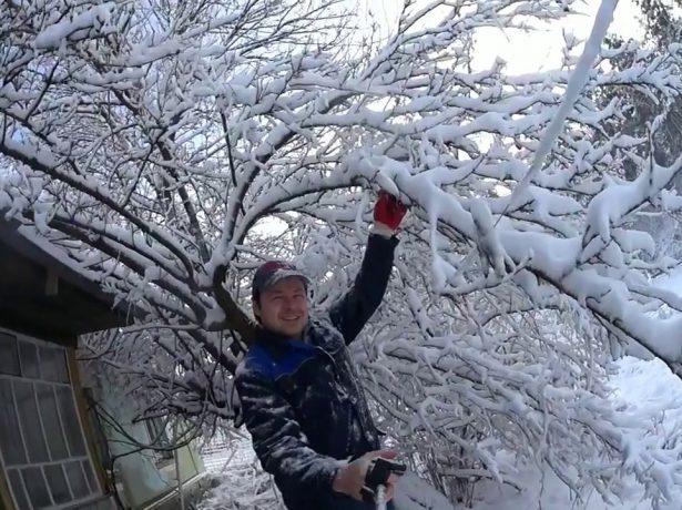 Перші клопоти після зими: роботи на дачі в лютому-березні