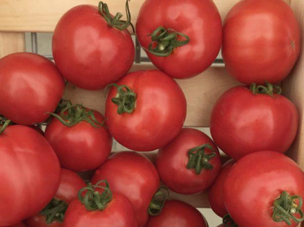Томати вирощуються майже виключно для власного вживання на місці і є обєктом гордості городника. Крем-брюле