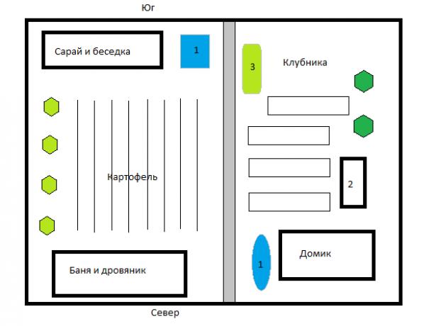 Як правильно зробити грядки: 2 реальних плану городу на ділянці