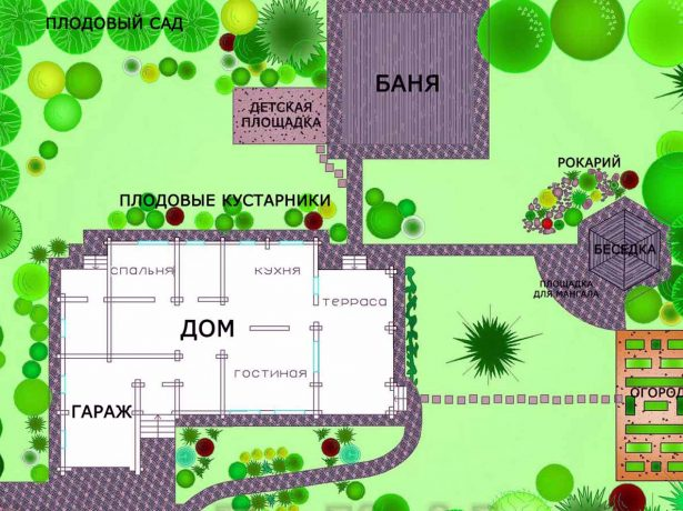 Ягода-малина: кращі ремонтантні сорти для різних регіонів росії