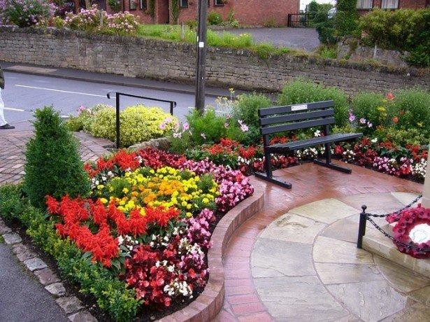 Поєднання рослин і квітів на клумбі за формою, кольором та іншими характеристиками