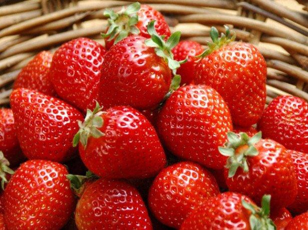 Свіжа полуниця в січні або чи можливо виростити полуницю вдома?