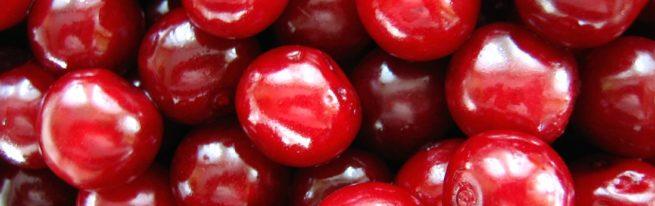 Своїй ділянці посадили вишню харитоновскую, самоплодную. Прислухавшись до рекомендацій господаря плантації, докупили ще сорт, для кращого запилення.докупили ми сорт вишні жуковський, а володимирівська вже була на ділянці. У минулому році у нас був вже перший урожай смачних ароматних кисло-солодких плодів вишні харитонівської. Lenochok Http://www.divosad.ru/forum/9-271-1 У мене ростуть жуковська і харитонівська. Жуковська малосамоплодная, інші характеристики хороші. Харитоновская самобесплодная, взаимоопыляется з жуковської, морозостійкість середня, а так непоганий сорт вишні. Ізабелла нілова Http://www.liveinternet.ru/users/4229727/post216975355/