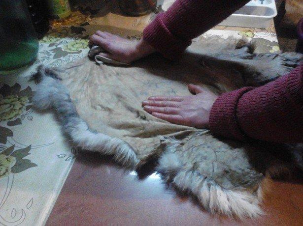 Вироблення шкурок кролика в домашніх умовах, поетапна інструкція